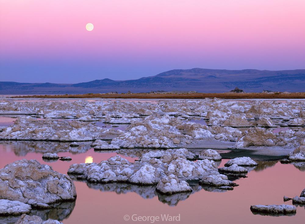 Rising Moon over Mono Lake, Mono Basin National Forest Scenic Area, CA