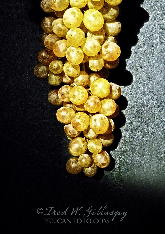 Chardonnay Cluster