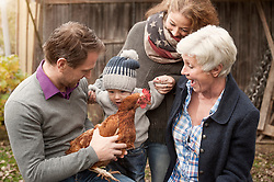 Family with chickens bird sitting in poultry farm, Bavaria, Germany