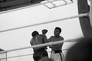 Ali vs Lewis Fight, Croke Park,Dublin..1972..19.07.1972..07.19.1972..19th July 1972..As part of his built up for a World Championship attempt against the current champion, 'Smokin' Joe Frazier,Muhammad Ali fought Al 'Blue' Lewis at Croke Park,Dublin,Ireland. Muhammad Ali won the fight with a TKO when the fight was stopped in the eleventh round...Photo as Ali moves in with a combination of punches to Lewis's body.