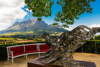 Ten bronze sculptures of cheetahs by Dylan Lewis are displayed in situ (with the Vineyards in background), Delaire Graff Wine Estate atop Helshoogte Pass, near Stellenbosch, Cape Winelands (near Cape Town), South Africa.