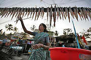 A woman puts up the days catch to dry before selling them later the same day.  The small fishing village of Machimaar Nagar struggles to hold on as the explosive growth of Mumbai begins to encroach on its space.