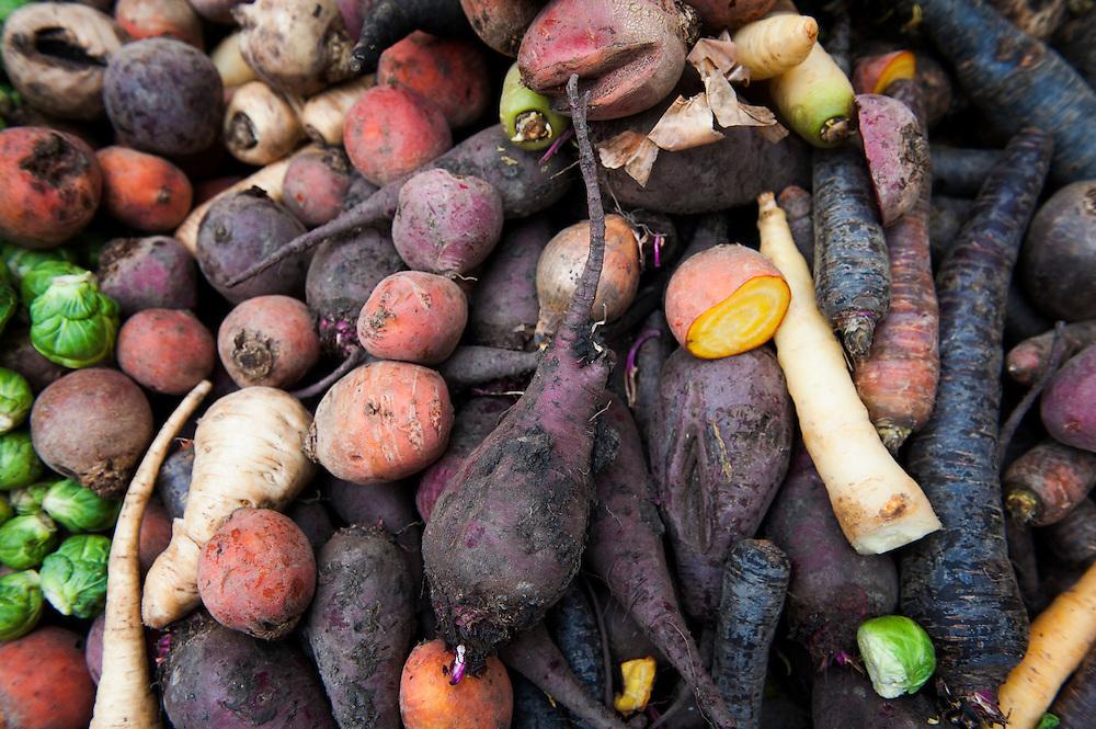 Nederland, Amsterdam, 19 dec 2012.Albert Cuypmarkt.Kraam met biologische en bijzondere groenten..Vergeten groente.Foto(c): Michiel Wijnbergh