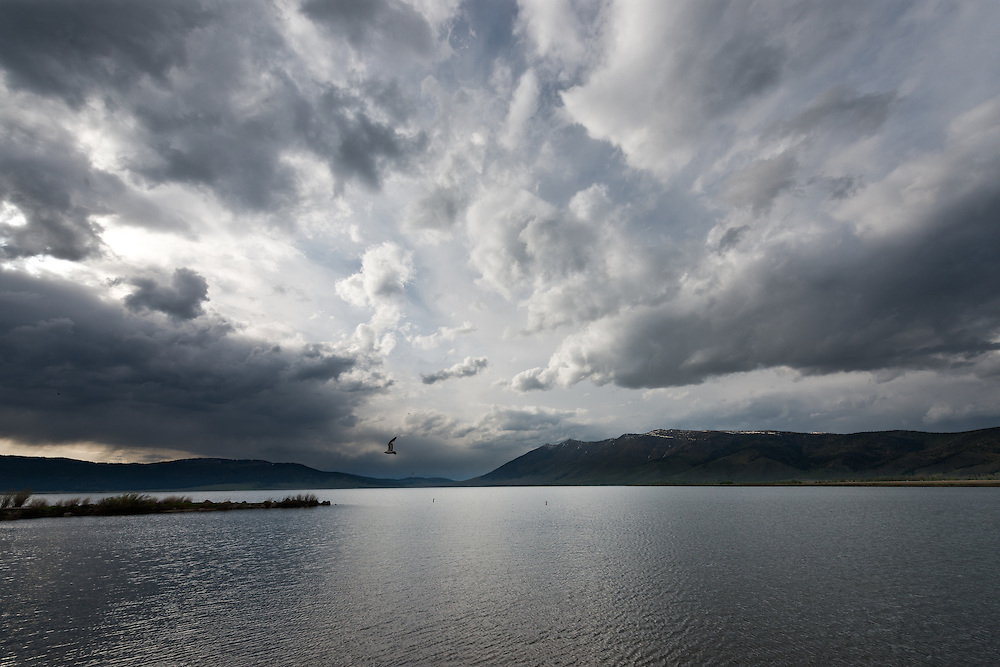 Henrys Lake Monochromatic Silver Spring weather and clouds.  One of the Sources of the Henrys Fork of the Snake River near Island Park. Licensing and Open Edition Prints