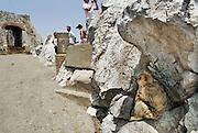 Spanje, Gibraltar, 8-6-2006Een van de wilde apen  van Gibraltar. Ze zijn een atractie voor de toeristen.Britse kroonkolonie. Spanje wil de rots terug.Foto: Flip Franssen