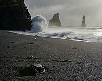 Reynisfjara black sand beach, Reynisdrangar Sea Stacks in background. Waves crashing on beach. South Coast of Iceland.