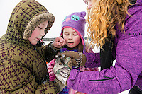 An exercise in team work as Bryson Chambers takes the hook out of Lily Peterson's Pickerel while mom Amy Chambers holds the fish steady during Sunday morning's Kids Ice Fishing Derby at Lily Pond with the Belknap County Sportmen's Club.  (Karen Bobotas/for the Laconia Daily Sun)