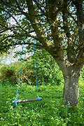 Simple log and plastic rope swing in an English country garden