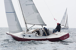 Day three of the Silvers Marine Scottish Series 2016, the largest sailing event in Scotland organised by the  Clyde Cruising Club<br /> Racing on Loch Fyne from 27th-30th May 2016<br /> <br /> <br /> GBR3509L, Apache, George Brown, Royal Forth YC, Rustler 33<br /> <br /> Credit : Marc Turner / CCC<br /> For further information contact<br /> Iain Hurrel<br /> Mobile : 07766 116451<br /> Email : info@marine.blast.com<br /> <br /> For a full list of Silvers Marine Scottish Series sponsors visit http://www.clyde.org/scottish-series/sponsors/
