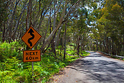 Bends for the next 60km - driving in Kosciuszko National Park, Australia