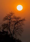 Sunrise in Bandhavgarh National Park.