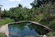 South Pacific, The Republic of Vanuatu landscape