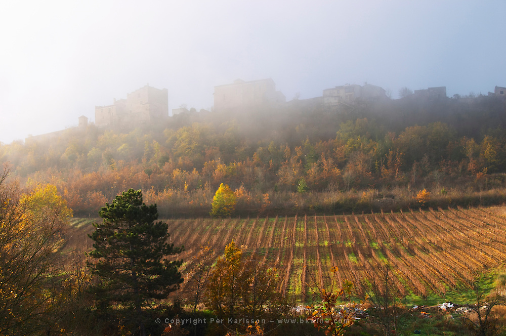 Roquetaillade hilltop village. Limoux. Languedoc. An early winter morning with mist still laying low and sunshine glowing golden. France. Europe. Vineyard.