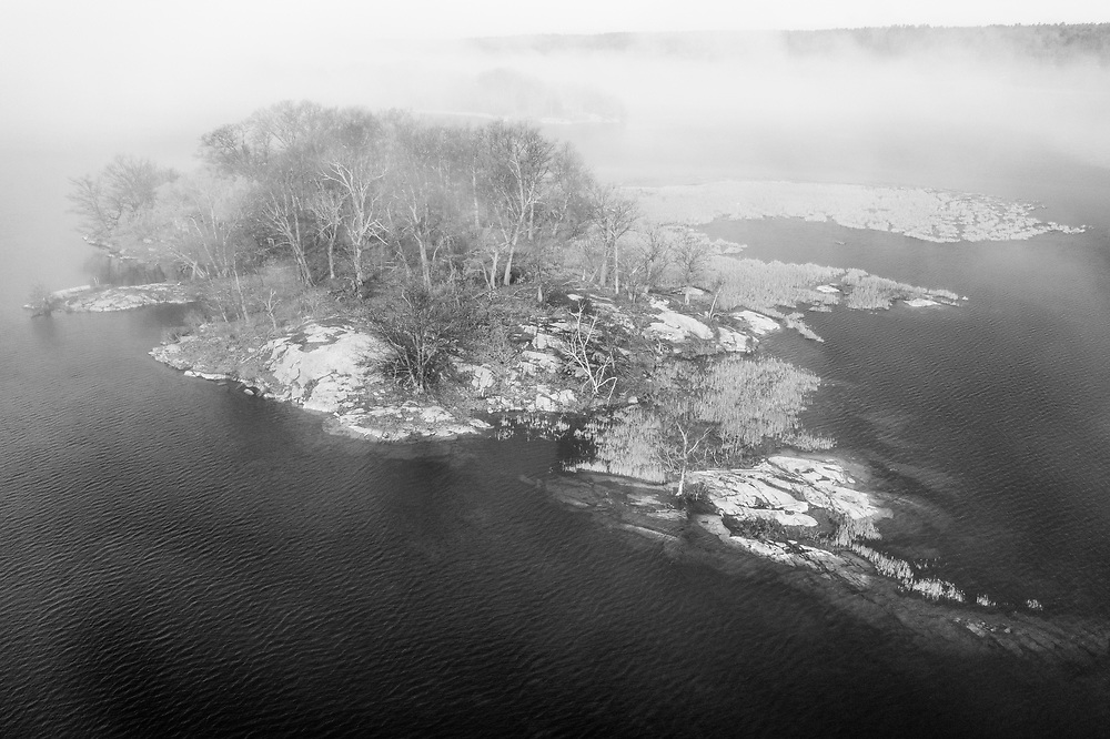 https://Duncan.co/island-and-trees-in-the-fog