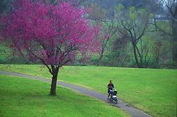 Stock photo of a woman with a stroller jogging through Buffalo Bayou Park