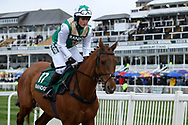 Pass The Hat and jockey Sarah Rippon head to the start for the 4.05PM The Randox Health Foxhunters' Steeple Chase (Class 2) 2m 5f during the Grand National Festival Week at Aintree, Liverpool, United Kingdom on 4 April 2019.
