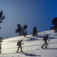 Ski Mountaineers climb into Bishop Bowl in the eastern Sierra Nevada, CA