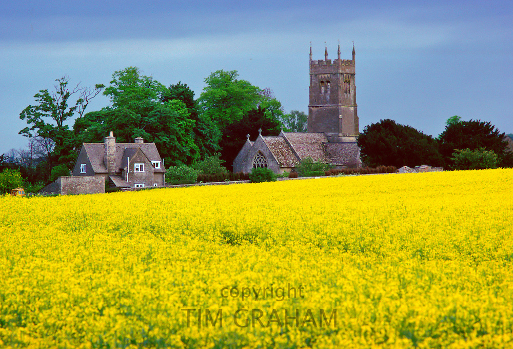 Church and country house in Coates Village surrounded by rape crop near Cirencester, The Cotswolds, England, United Kingdom