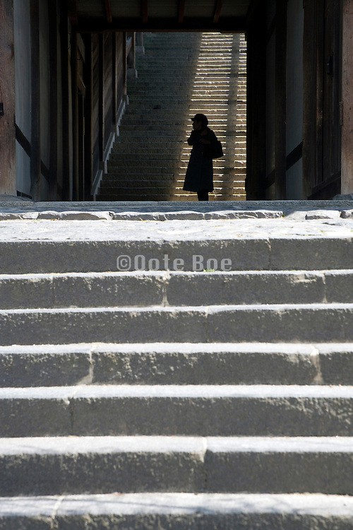 person in front of large stairway at the end of a corridor Japan Nara at the Todai-ji Nigatsu-do Temple