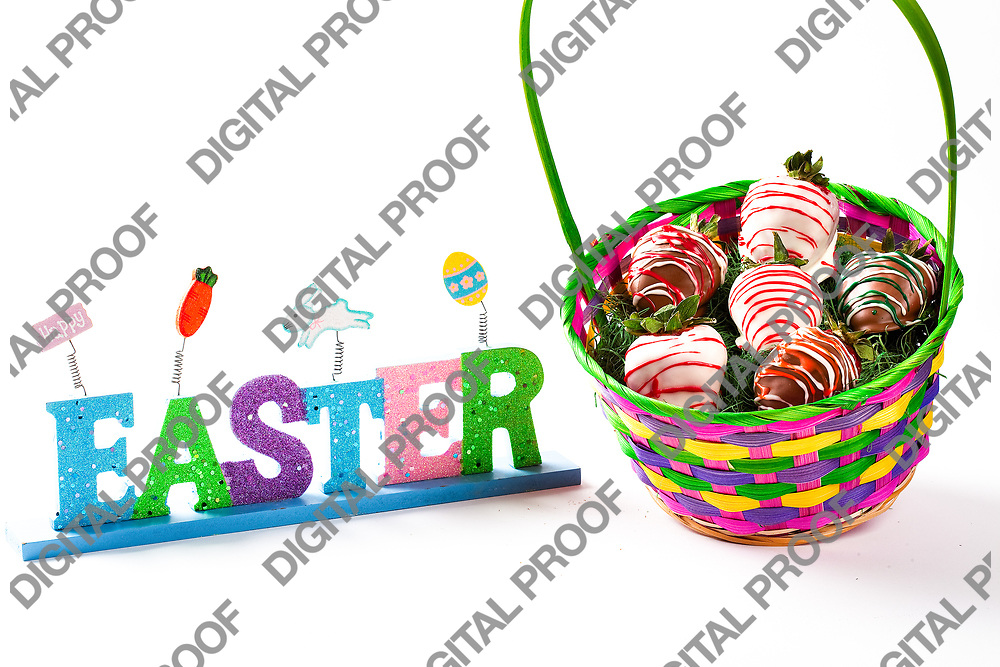 Basket full of chocolate covered strawberries on the occasion of easter celebration isolated in studio with white background