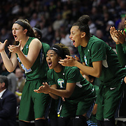 The Tulane bench cheer their team to victory during the Tulane Green Wave Vs Memphis Tigers Quarter Final match at the  2016 American Athletic Conference Championships. Mohegan Sun Arena, Uncasville, Connecticut, USA. 5th March 2016. Photo Tim Clayton