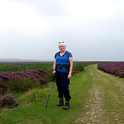 Portrait of a female hiker with a walking pole on a footpath amongst the heather at the Hole of Horcum, North York Moors, North Yorkshire, UK