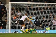 Fulham v Norwich City 140114