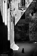 Silent Alleys, Mdina, Malta