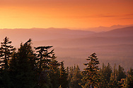 Sunset over trees and forest covered hills, Crater Lake National Park, Oregon