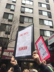 """NEW YORK, USA - Saturday, January 21, 2017: A woman holds up a banner """"One Race: Human"""" as thousands of people take part in the Women's March on January 21, 2017 in New York City. The Midtown Manhattan event was one of many anti-Trump protests nationwide that came a day after Donald Trump was sworn in as the 45th President of the United States. (Pic by Concepcion Valadez/Propaganda)"""