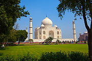The Taj Mahal framed by trees. It is an ivory-white marble mausoleum on the southern bank of the river Yamuna in the Indian city of Agra
