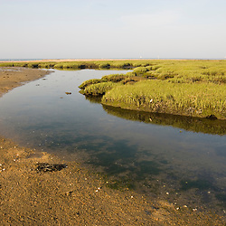 The beach and tidal marsh at Griswold Point Connecticut USA