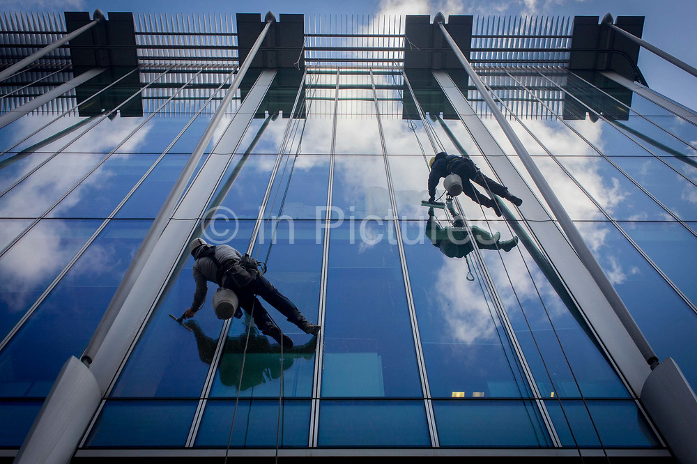 Using a system of ropes and cables, a team of window cleaners wipe plate-glass and lower themselves from a City of London office block in the heart of the capital's financial district otherwise known as the Square Mile, after its circling Roman wall. Reaching across the window glass that is reflecting background blue sky and white clouds. Looking from beneath them, we see the top of the office building as the duo work their way down towards the ground, their buckets of water used to dip the squeegees.