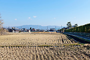 rice paddies during winter in the Nara prefecture Japan
