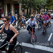 Bike tour around the city.