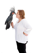 Sanctuary director Jamie McLeod sharing her special relationship with Sanctuary resident Buddha, the Black Palm Cockatoo (Probosciger aterrimus).