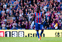 LONDON, ENGLAND - MAY 13: Pape Souaré (23) of Crystal Palace with fans during the Premier League match between Crystal Palace and West Bromwich Albion at Selhurst Park on May 13, 2018 in London, England. MB Media