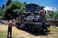 Steam train pulling into Roaring Camp, Felton, Santa Cruz County, CALIFORNIA