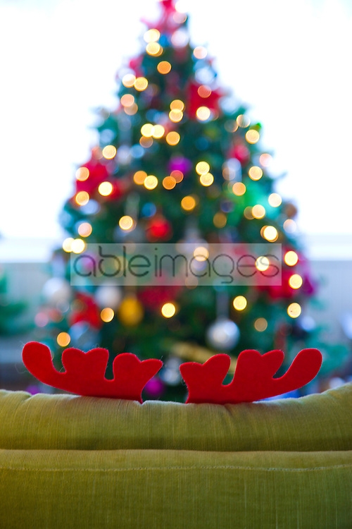 Green Sofa with Christmas Antlers opposite Christmas Tree