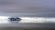 Island, drift ice and calm sea in the Antarctic Sound on the northern tip of the Antarctic Peninsula