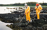 Alaska . Workers outfitted in safety attire spray benign nutrients for Bioremediation Project . <br /> Bioremediation can be defined as any process that uses microorganisms, fungi, green plants or their enzymes to return the environment altered by contaminants to its original condition. Bioremediation may be employed to attack specific soil contaminants, such as chlorinated hydrocarbons that are degraded by bacteria, or a more general approach may be taken, such as oil spills that are broken down by multiple techniques including the addition of nitrate and/or sulfate fertilizers to facilitate the decomposition of crude oil by indigenous or exogenous bacteria.