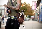 """SHOT 8/28/09 7:21:25 PM - Denver tattoo artist """"Zeb One"""" with Zeus, his 10 month-old Teacup Chihuahua as he was out promoting his tattoo work on Colfax Avenue near the Bluebird Theater. Colfax Avenue is the main street that runs east and west through the Denver-Aurora metropolitan area in Colorado. As U.S. Highway 40, it was one of two principal highways serving Denver before the Interstate Highway System was constructed. In the local street system, it lies 15 blocks north of the zero point (Ellsworth Avenue, one block south of 1st Avenue). For that reason it would normally be known as """"15th Avenue"""" but the street was named for the 19th-century politician Schuyler Colfax. On the east it passes through the city of Aurora, then Denver, and on the west, through Lakewood and the southern part of Golden. Colloquially, the arterial is referred to simply as """"Colfax"""", a name that has become associated with prostitution, crime, and a dense concentration of liquor stores and inexpensive bars. Playboy magazine once called Colfax """"the longest, wickedest street in America."""" However, such activities are actually isolated to short stretches of the 26-mile (42 km) length of the street. Periodically, Colfax undergoes redevelopment by the municipalities along its course that bring in new housing, trendy businesses and restaurants. Some say that these new developments detract from the character of Colfax, while others worry that they cause gentrification and bring increased traffic to the area. (Photo by Marc Piscotty / © 2009)"""