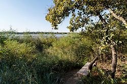 Bench looking out on lake from Greer Island in Lake Worth, Fort Worth Nature Center, Fort Worth, Texas USA. Greer Island is the home of the famed Lake Worth Monster, or Goatman.