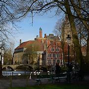 Swans Pond In Brugge, Belgium
