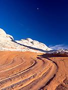 Rock detail at White Pocket, Paria Plateau, Vermilion Cliffs National Monument, Arizona.