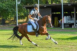 , Warendorf - Bundeschampionate 04. - 08.09.2013, Golden Empress - Knoll,Charlie