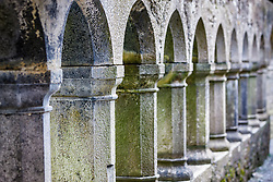 View through columns and arches, Ross Errilly Friary, County Galway, Ireland