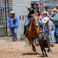 Breakaway roper Lynelle Etsitty chases her calf from the chute during the Gallup Inter-tribal Indian Ceremonial rodeo Saturday at Red Rock Park.