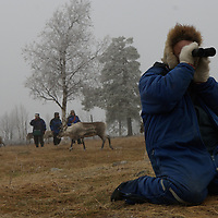 Hirvas Salmi, FINLAND.  Observing his reindeer through binoculars, a herdsman tabulates exactly how many there are to corral.
