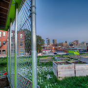 Community garden in the Crossroads District at 18th and Broadway, Kansas City, Missouri.
